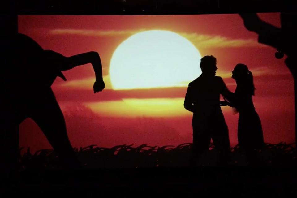 Dance-Industry Schattenshow