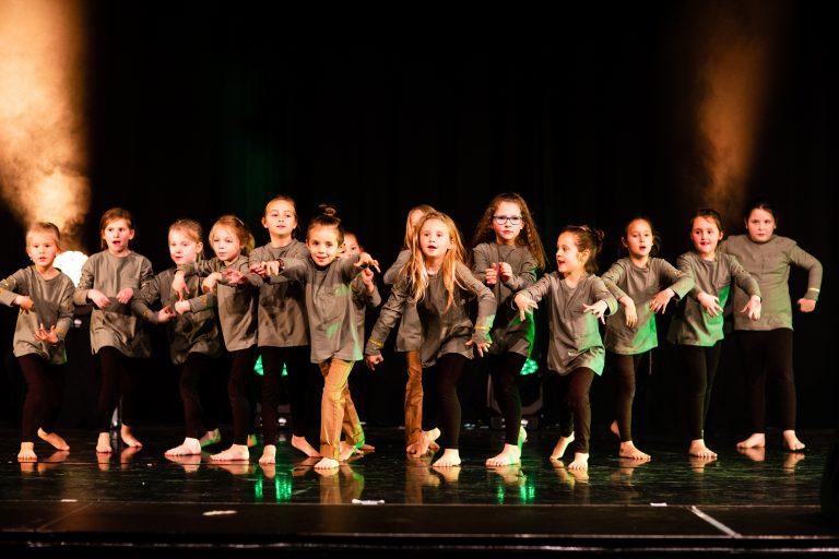 Show Dance-Industry